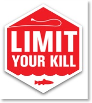 limit-your-kill-final-2